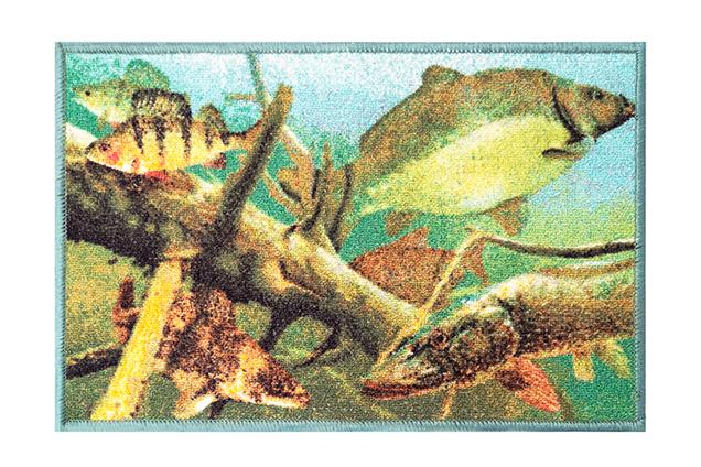 Rohož Delphin AQUA,60x40cm